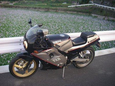 Imgp0008