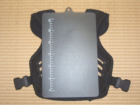 P3090067